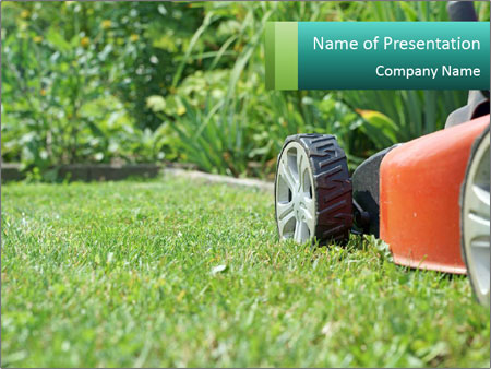 Green Grass In Garden PowerPoint Template