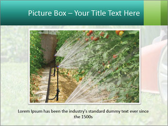 Green Grass In Garden PowerPoint Template - Slide 16