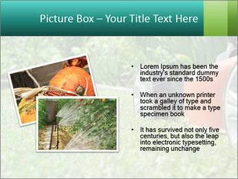 Green Grass In Garden PowerPoint Template - Slide 20