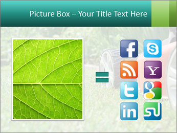 Green Grass In Garden PowerPoint Template - Slide 21