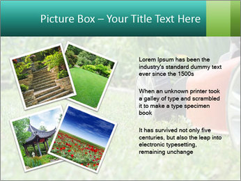 Green Grass In Garden PowerPoint Template - Slide 23