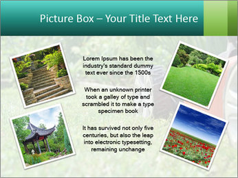 Green Grass In Garden PowerPoint Template - Slide 24