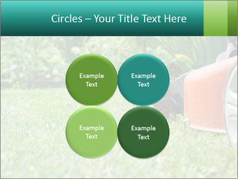Green Grass In Garden PowerPoint Template - Slide 38