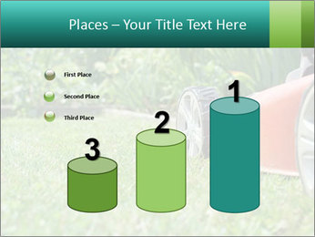 Green Grass In Garden PowerPoint Template - Slide 65