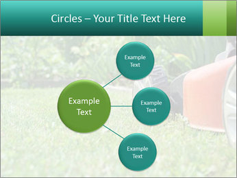 Green Grass In Garden PowerPoint Template - Slide 79