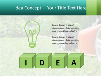 Green Grass In Garden PowerPoint Template - Slide 80