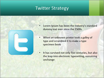 Green Grass In Garden PowerPoint Template - Slide 9