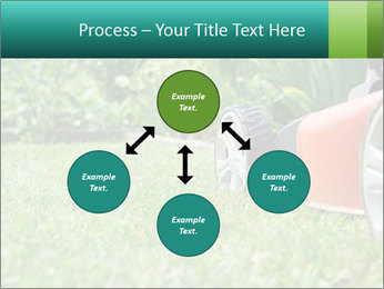 Green Grass In Garden PowerPoint Template - Slide 91