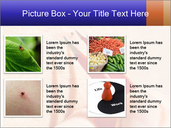 Lyme Disease PowerPoint Template - Slide 14