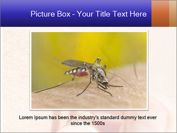 Lyme Disease PowerPoint Template - Slide 15