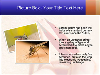 Lyme Disease PowerPoint Template - Slide 20