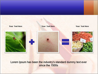 Lyme Disease PowerPoint Template - Slide 22