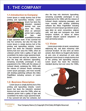 0000088930 Word Template - Page 3