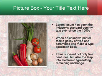 Dried Tomatos PowerPoint Template - Slide 13