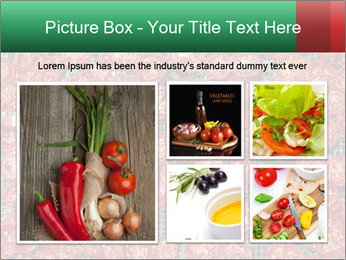 Dried Tomatos PowerPoint Template - Slide 19