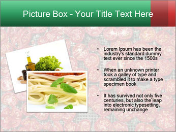 Dried Tomatos PowerPoint Template - Slide 20