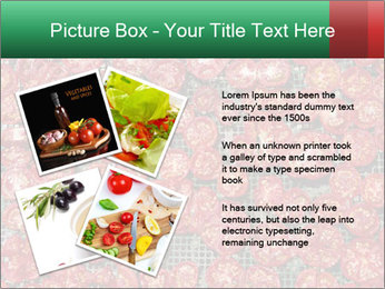 Dried Tomatos PowerPoint Template - Slide 23