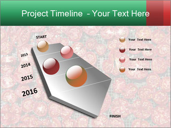 Dried Tomatos PowerPoint Template - Slide 26