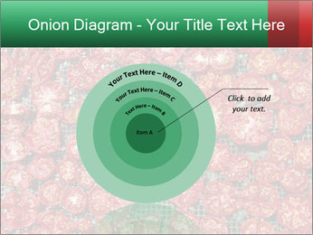 Dried Tomatos PowerPoint Template - Slide 61