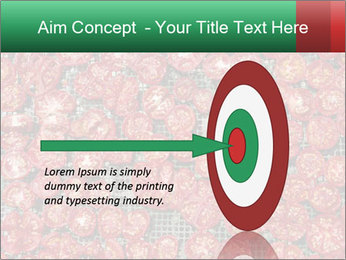 Dried Tomatos PowerPoint Template - Slide 83