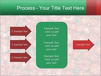 Dried Tomatos PowerPoint Template - Slide 85