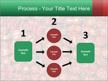 Dried Tomatos PowerPoint Template - Slide 92