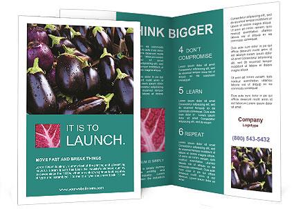 0000088935 Brochure Templates