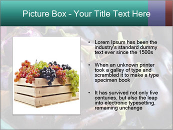Aubergine PowerPoint Template - Slide 13