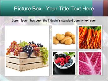 Aubergine PowerPoint Template - Slide 19