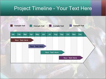 Aubergine PowerPoint Template - Slide 25