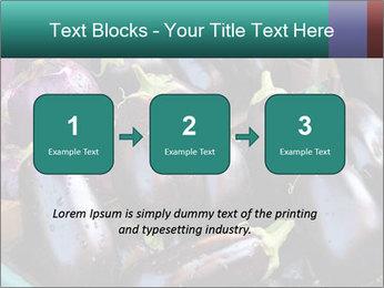 Aubergine PowerPoint Templates - Slide 71