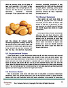0000088935 Word Template - Page 4