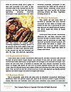 0000088942 Word Template - Page 4