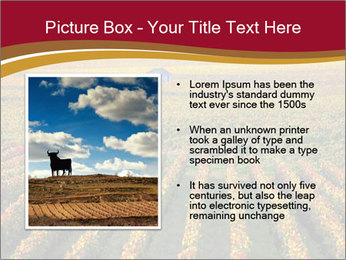 French Viniculture PowerPoint Template - Slide 13