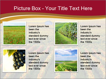 French Viniculture PowerPoint Template - Slide 14
