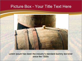 French Viniculture PowerPoint Template - Slide 15