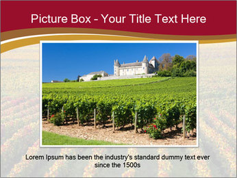 French Viniculture PowerPoint Template - Slide 16