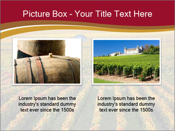 French Viniculture PowerPoint Template - Slide 18