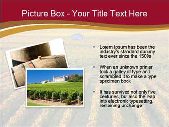 French Viniculture PowerPoint Template - Slide 20