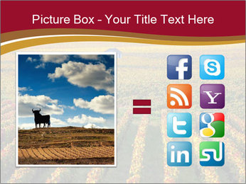 French Viniculture PowerPoint Template - Slide 21