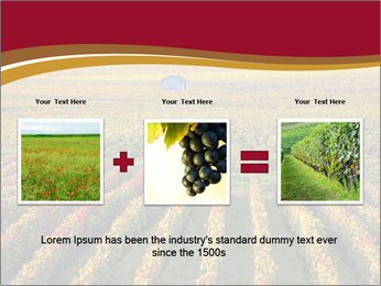 French Viniculture PowerPoint Template - Slide 22