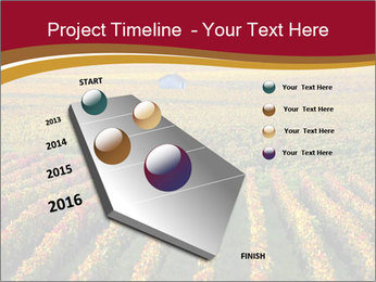 French Viniculture PowerPoint Templates - Slide 26