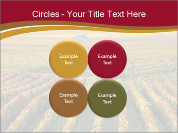French Viniculture PowerPoint Template - Slide 38
