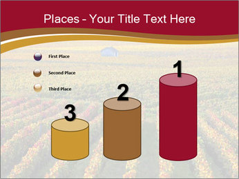 French Viniculture PowerPoint Templates - Slide 65