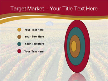 French Viniculture PowerPoint Template - Slide 84