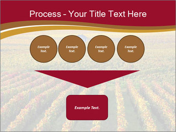 French Viniculture PowerPoint Template - Slide 93