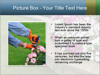 Flowerbed PowerPoint Template - Slide 13