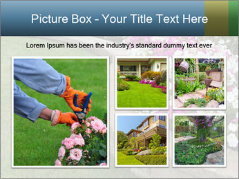 Flowerbed PowerPoint Template - Slide 19