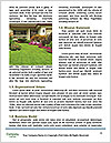 0000088952 Word Templates - Page 4
