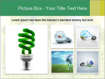 Green Light Bulb PowerPoint Template - Slide 19